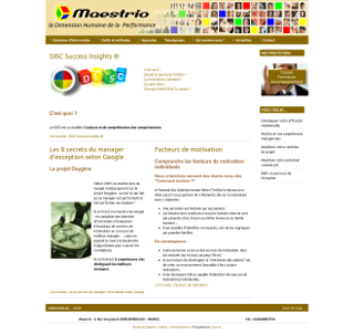 Site Maestrio : performance commerciale